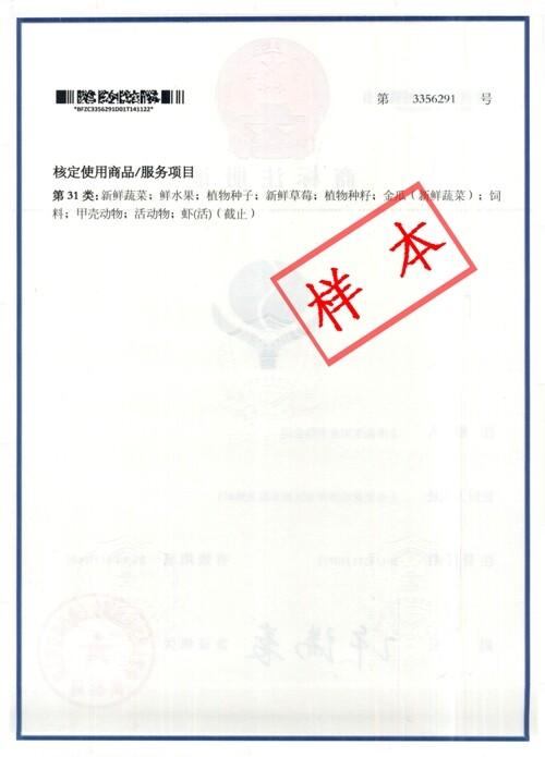 商标证书背面